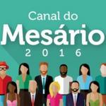 Inscrições para o Mesário Voluntário 2016 já estão abertas